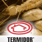 Termite-Control-Thumbnail1-140x140