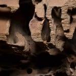 Damage from Carpenter Ants (photo credit: NPMA)